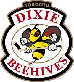 File:Toronto Dixie Beehives.jpg