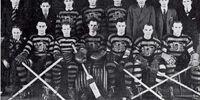 1938-39 NSHL season
