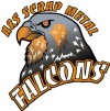 Sherwood Falcons logo