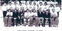 1973–74 Minnesota Fighting Saints season