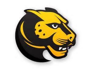 Wentworth Leopards logo