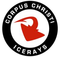 IceRays logo