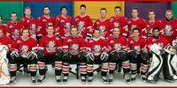 2010 AIHL season