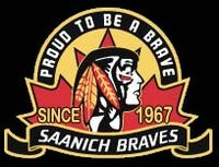 Braves crest2