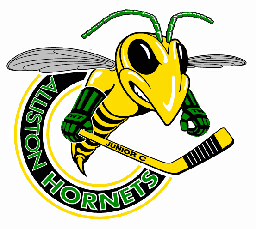 File:Alliston Hornets.png
