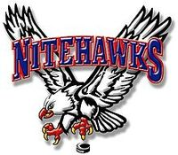 Beaver Valley Nitehawks Logo