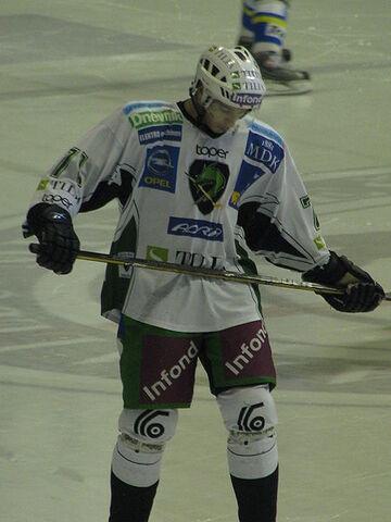 File:Boštjan Goličič 291109.jpg