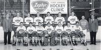 1961-62 IHL season