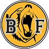 Burks Falls Bruins logo