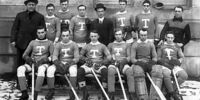 1912–13 Toronto Hockey Club season
