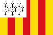Geel Flag