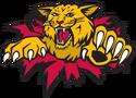 Moncton Wildcats
