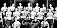 1948-49 LSJIHL season