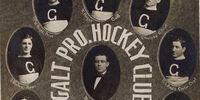 1911 OPHL season