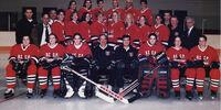 1998–99 NWHL season