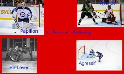 4 Forms of Goaltending