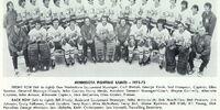 1972–73 Minnesota Fighting Saints season