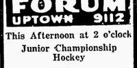 1928-29 JAHA Season