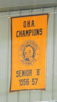 Wallaceburg Hornets banner