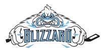 Indiana Blizzard