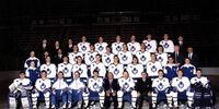 1990–91 Toronto Maple Leafs season
