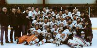 2016-17 Sask/Alta Senior Hockey League Season