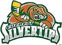 Everettsilvertips