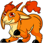 Makoat Orange