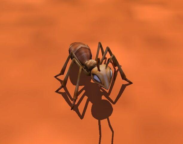 File:Ant.jpg