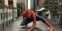 Spider-Man (Tobey Maguire)