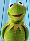 Muppetspartycruise kermit
