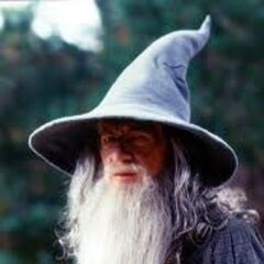 Gandalf The Grey (Center)