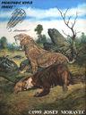 Saber Tooth Cat - Pleistocene period