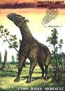 Indricotherium pervum - Oligocene