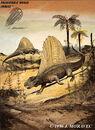 Dimetrodon grandis Permian reptile