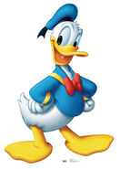 Donald Duck ( Character of Disney )