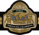 NWA World Tag Team Championship