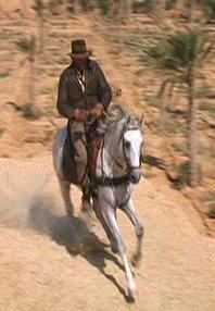 ファイル:Horse.jpg