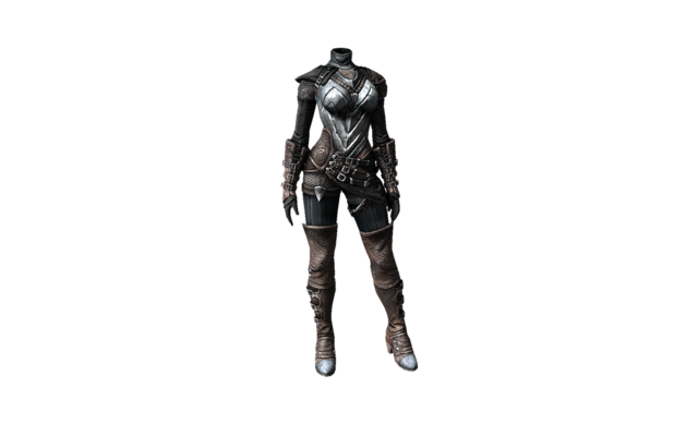 File:Thief Armor.png