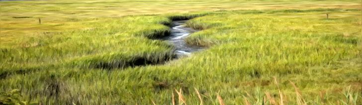 Banner---grassy-plains-river1