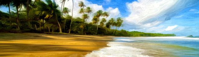 File:Banner---tropical-beach1.jpg