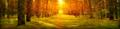 Thumbnail for version as of 13:41, September 19, 2016