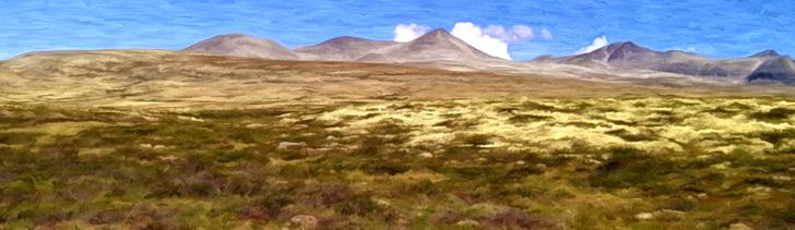 Banner---mountainplains3