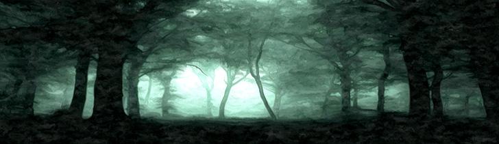 Initium ShadowedForest