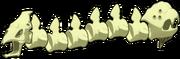 Bilaterus, The Skeleton Double-Bone Headed Killer
