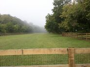 Roese Grove dog park enclosure