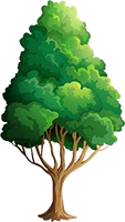 File:Forest 10.png