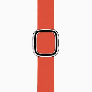 Red Modern Buckle Band