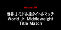 World Junior Middleweight Title Match