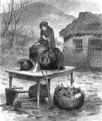 File:Byrne evicted woman 1886-4-17.jpg